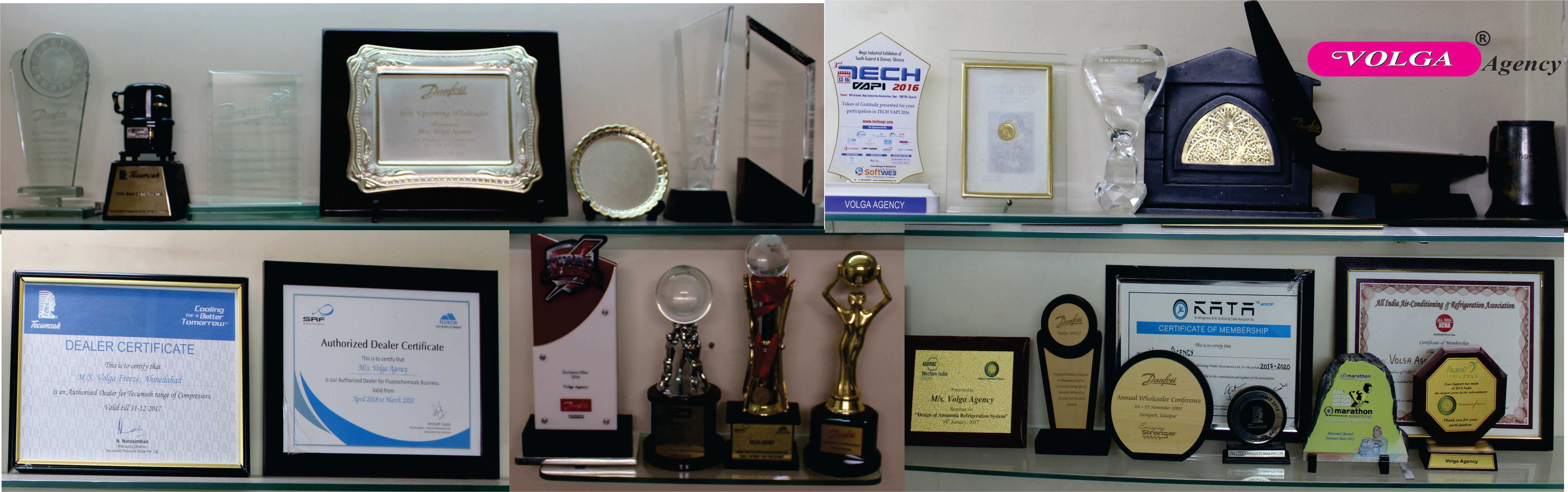 Achievement of Volga Agency